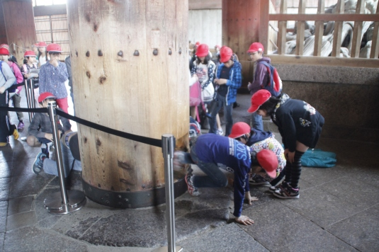 Japanese students trying to squeeze through the hole of this massive wooden column. It is believed that those who can pass through this opening will be granted enlightenment in their next life.