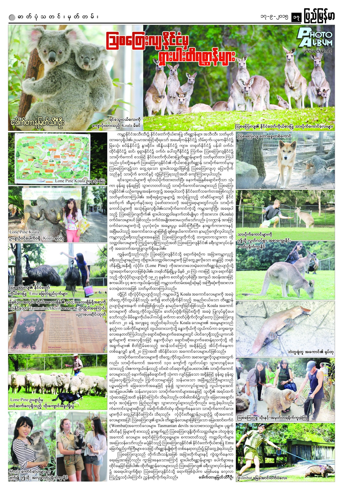 PMM 990 australia animals